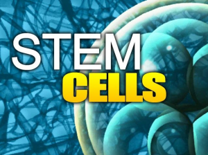 Stem Cells Orange County